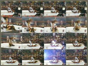 WWE_Divas_Stephanie